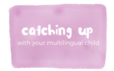 Catching up with a multilingual child
