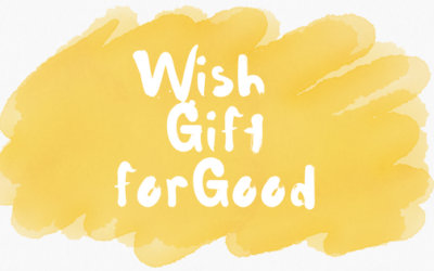 WiGiGo Kids – the gift giving revolution