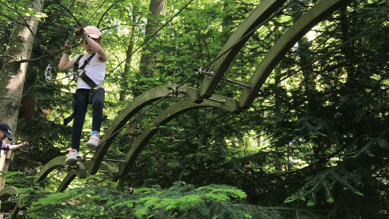 ACCROBRANCHE aka Tree Top Adventure Parks in Geneva