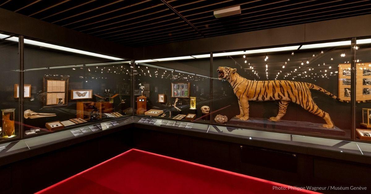 200 anniversary natural history museum geneva
